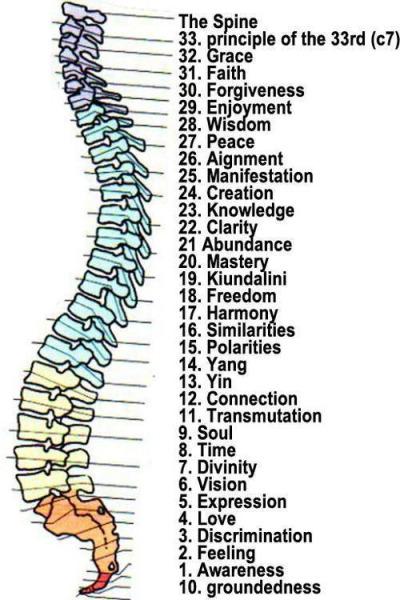 Bildresultat för 33 vertebrae kundalini